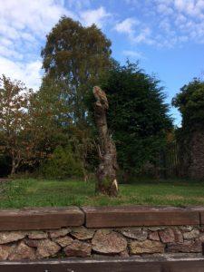 Wooden Owl Carving at Muncaster Castle