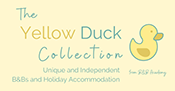 the yellow duck collection
