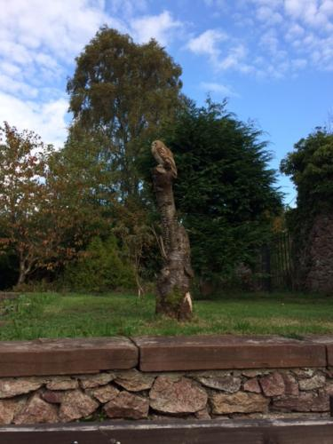 Wooden Hare Carving at Muncaster Castle